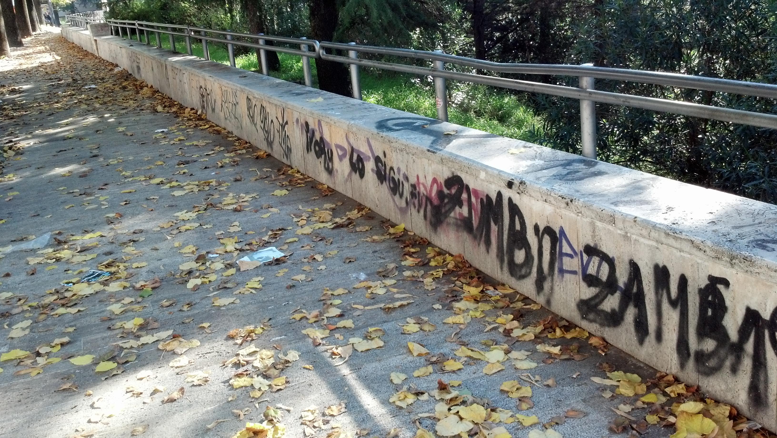 Graffiti ad Ascoli, ottobre 2012 7