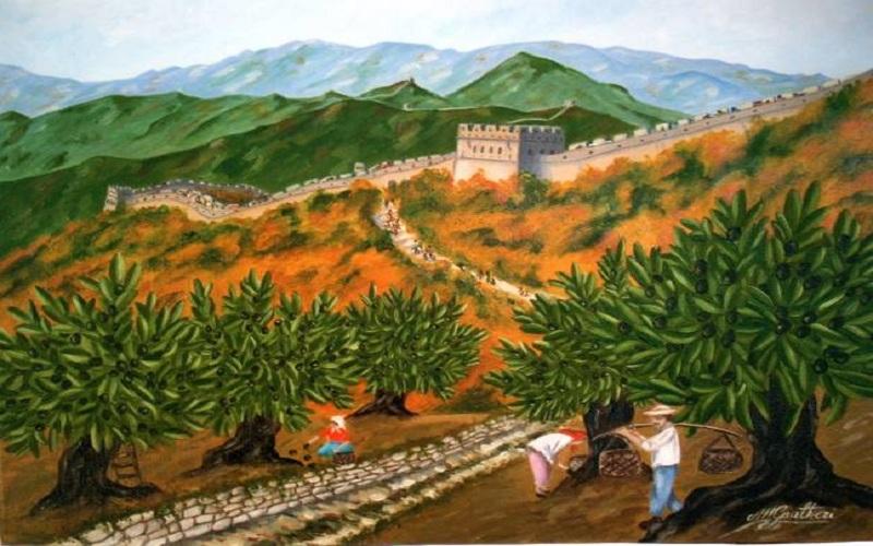 Raccolta delle olive in Cina (fonte: frantoionline.it)