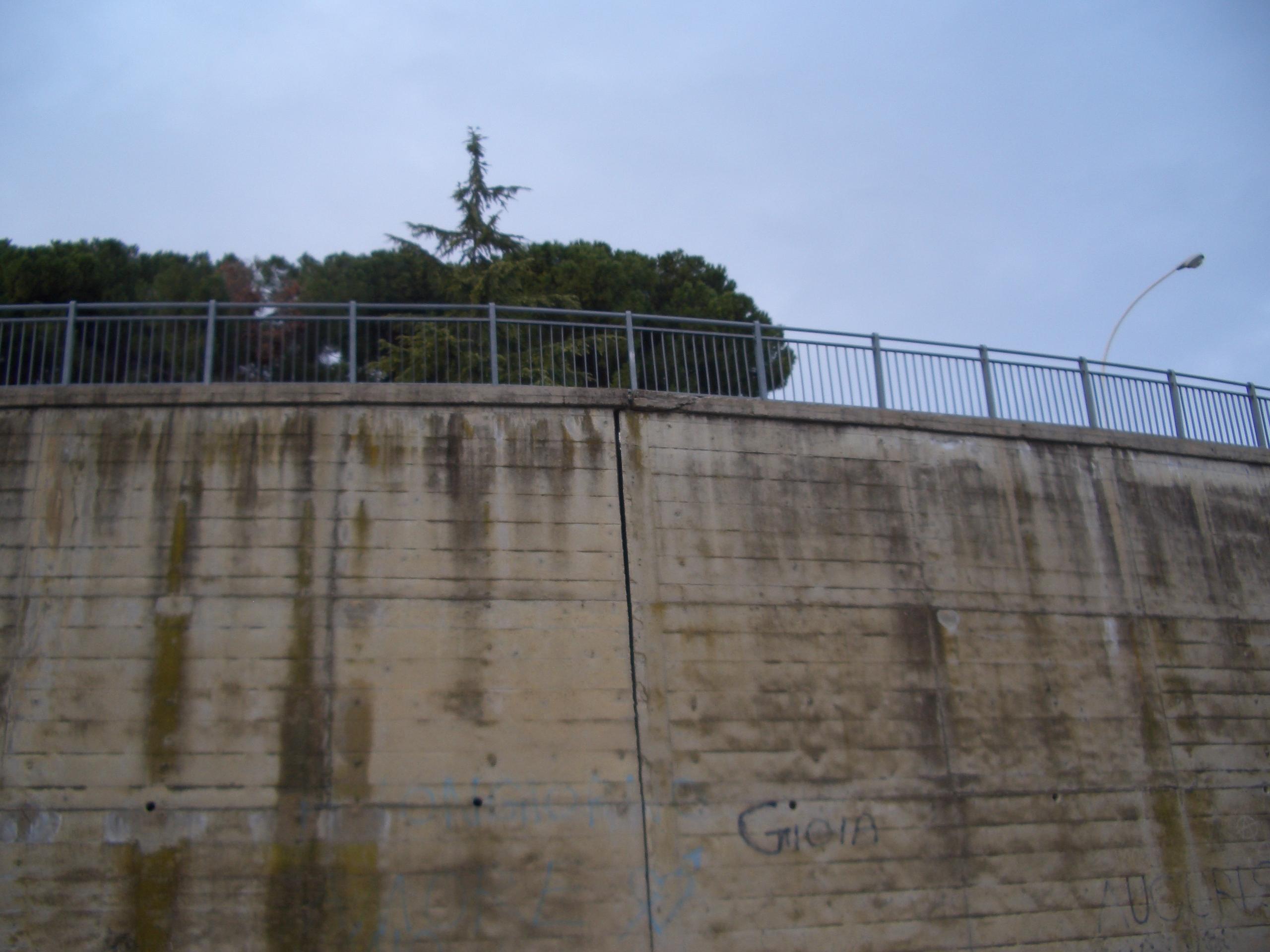Monticelli, via che sprofonda tra via delle Begonie e Largo dei Fiordalisi 1