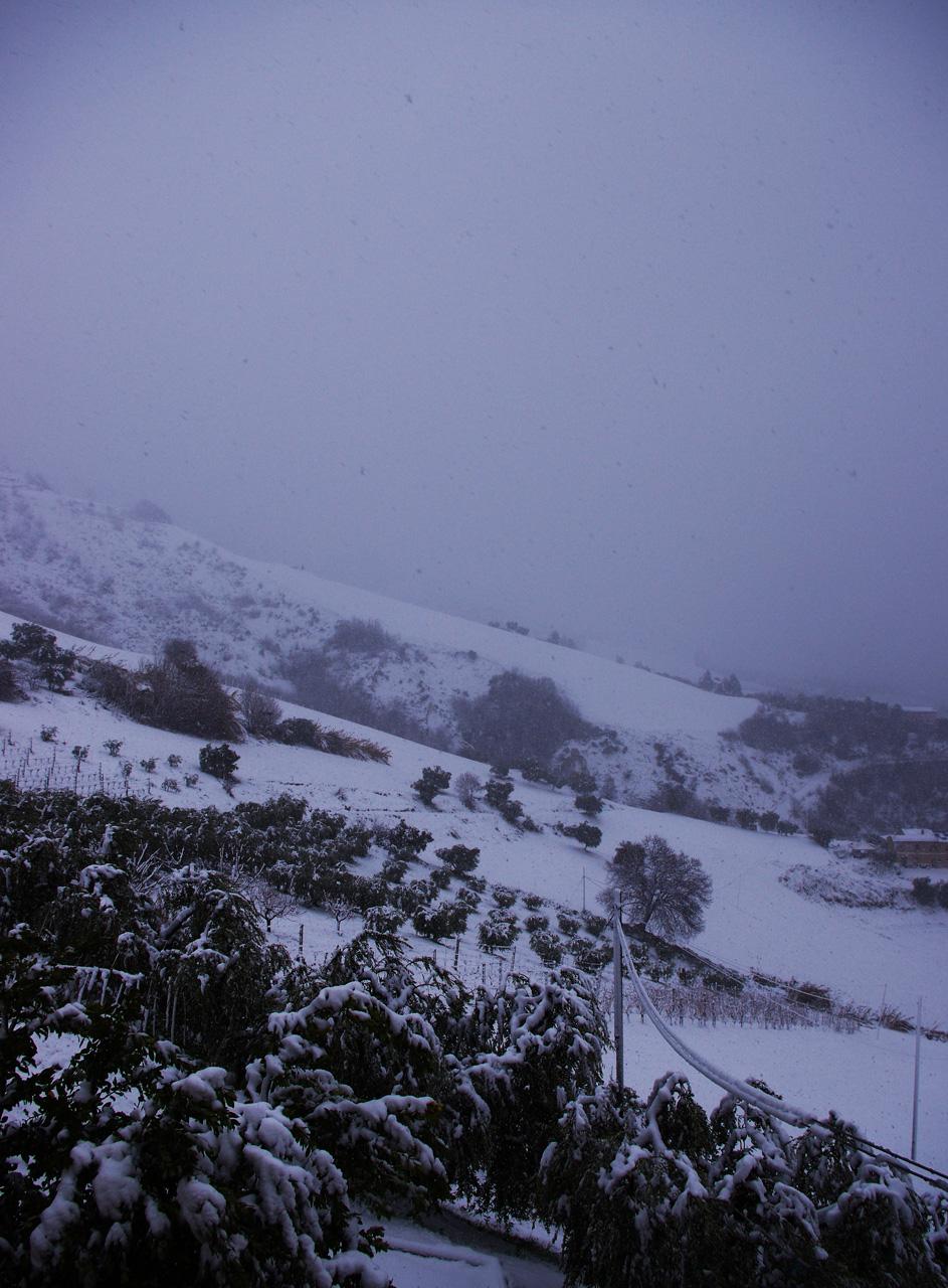 Neve a Ripatransone, 18 gennaio, foto di Roberto 2