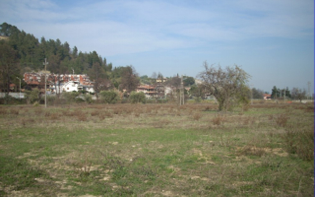 L'area dove dovrebbe avvenire l'urbanizzazione criticata dal circolo Pd di Monticelli