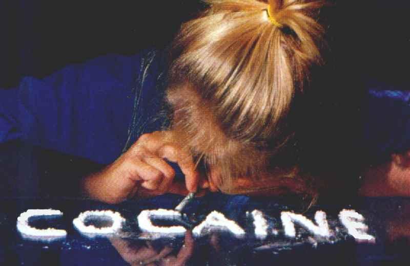 Cocaina (fonte www.discorsivo,it)