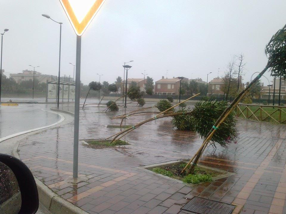 Quartiere Tesino spazzato dal vento del Ciclone Venere 11 11 13