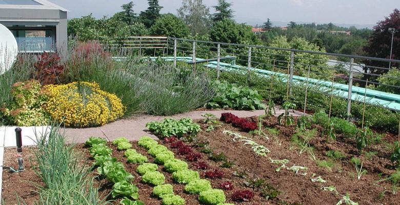 Un corso per la gestione di orti e giardini alla ugo - L orto in giardino ...