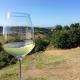Terroir Marche vino