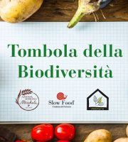 """Slow food for kids"""